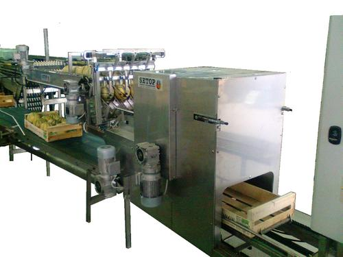 AUTOMATIC MELON PACKER