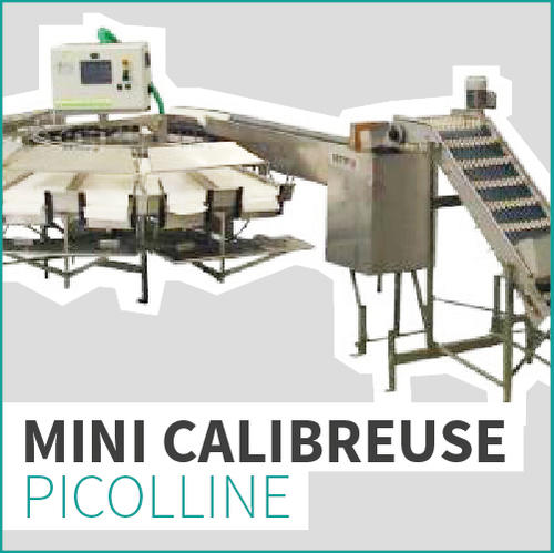 MINI CALIBREUSE PICOLLINE